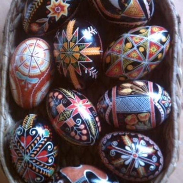 Claudia Harden Eggs