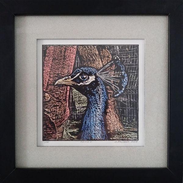 Andrea McCann Peacock