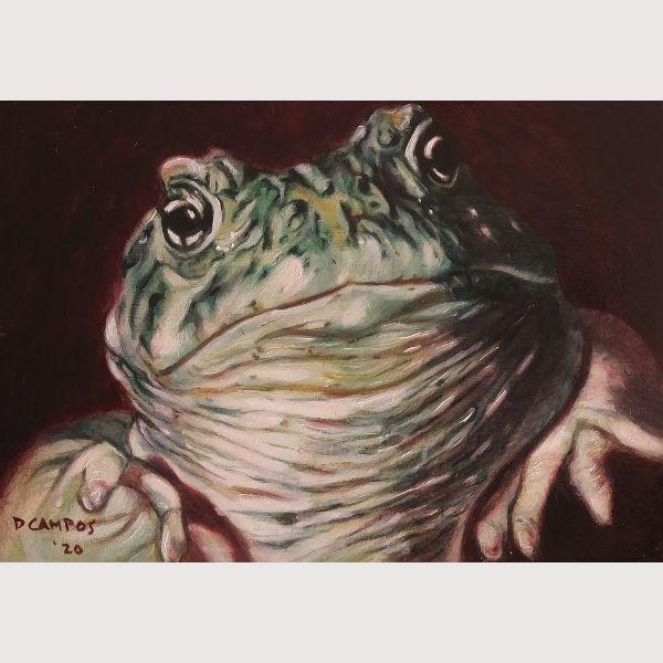 Dan Campos Frog