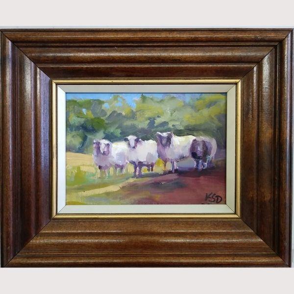 Kati D'Amore Sheep