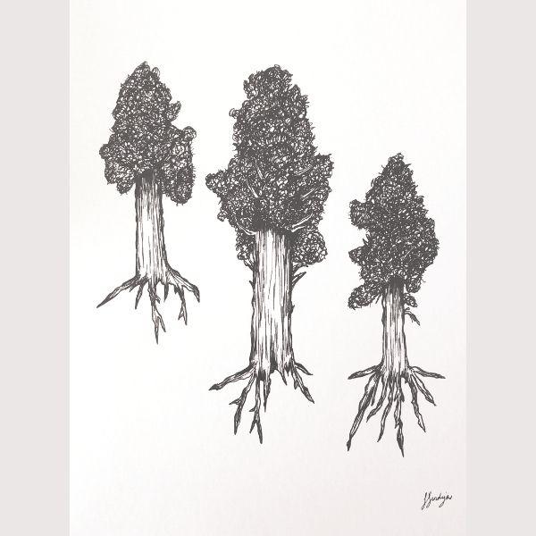 Sarah Sendejas Trees